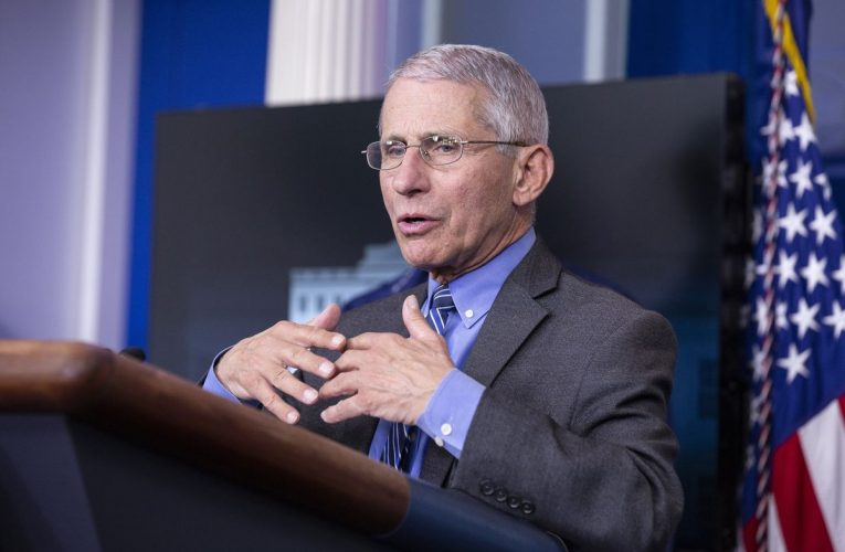 Fauci Leads Health Experts Testifying, Remotely, on Reopening