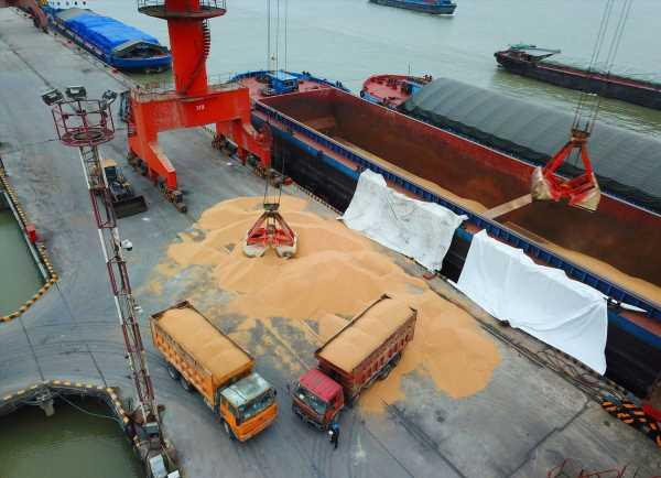 China Halts Some U.S. Farm Imports, Threatening Trade Deal