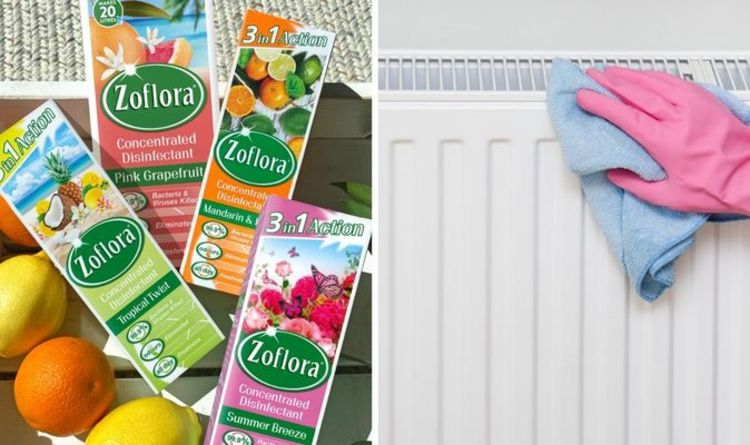 Mrs Hinch shares her £1 radiator cleaning hack to remove dust and rust