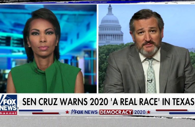 Ted Cruz says Texas may be a 2020 battleground, but not for the reasons media claims