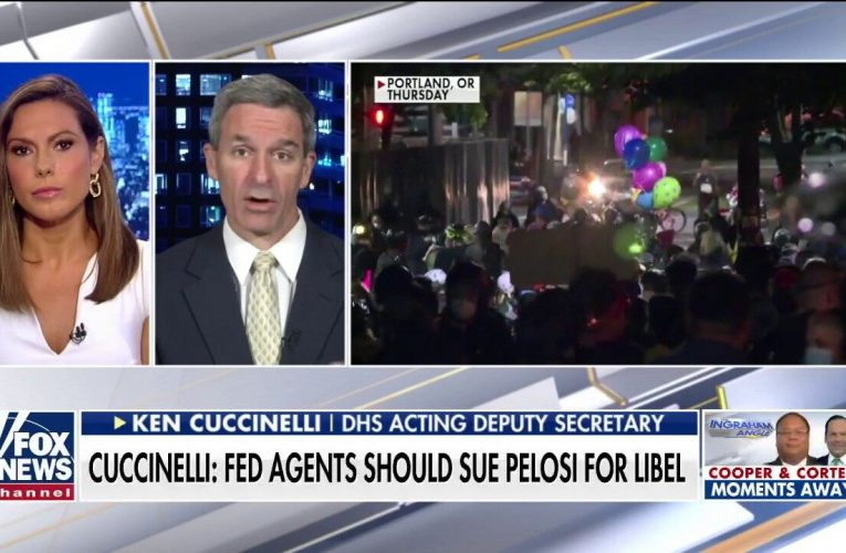 Ken Cuccinelli: Dems' 'Nazi' and 'stormtrooper' labels for fed officers may be libelous