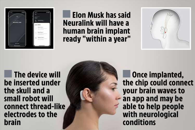 Brave users of Elon Musk's 'Neuralink' brain implants could be HACKED by crooks in future, cyber-experts suggest