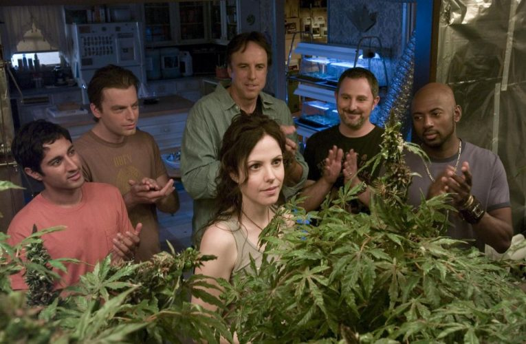 Lionsgate Digs In On 'Weeds' Syndication Offering For The Fall; Reboot Of Mary-Louise Parker Pot Drama Budding At Starz