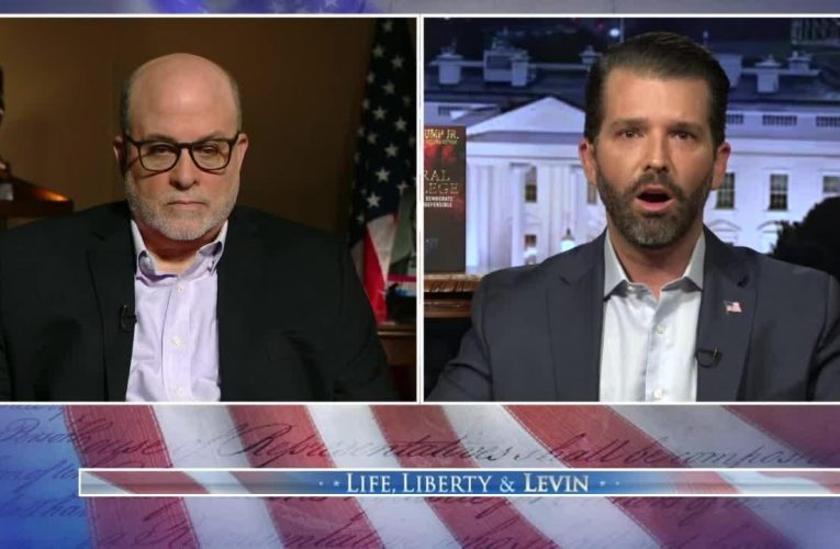 Trump Jr accuses Biden of having 'liberal privilege' to 'lie and flip-flop' but be called a 'moderate'