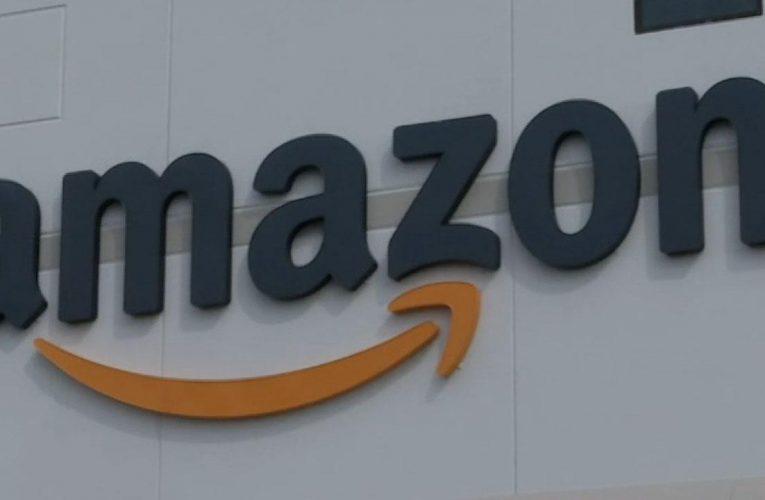 Amazon protesters outside Jeff Bezos' home construct guillotine: Report