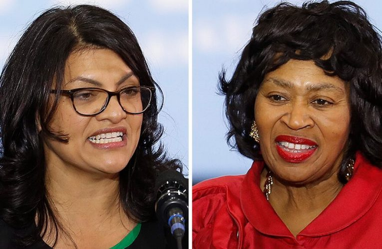 Tlaib accused of seeking 'rock star' status, ignoring constituents in tough primary challenge