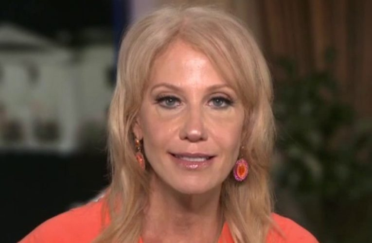 Kellyanne Conway says Americans aren't fooled by Biden policies, the former VP has benefited from lockdown