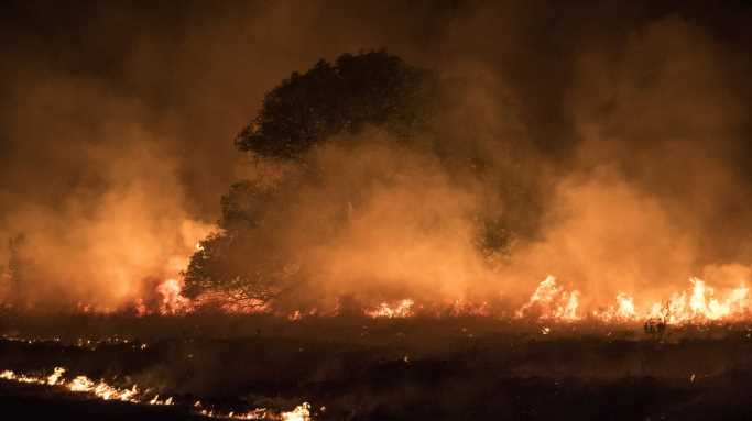 25 Counties Devastated by this Year's Wildfires
