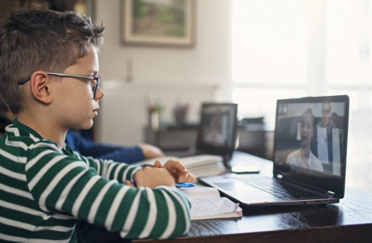 Will Appetite for Online Education Stocks Continue in 2021?