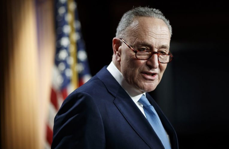Schumer Faces Impatient Left, Divided Right as New Senate Role