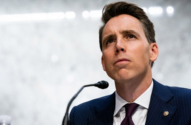 Hawley: Gamestop, Robinhood saga shows 'the fix is in' on Wall Street