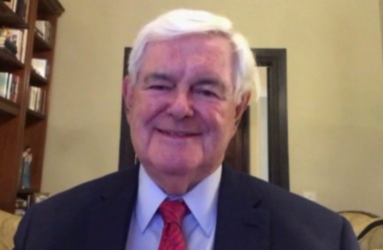 Gingrich slams Pelosi as 'most dangerous Speaker of the House we've had'