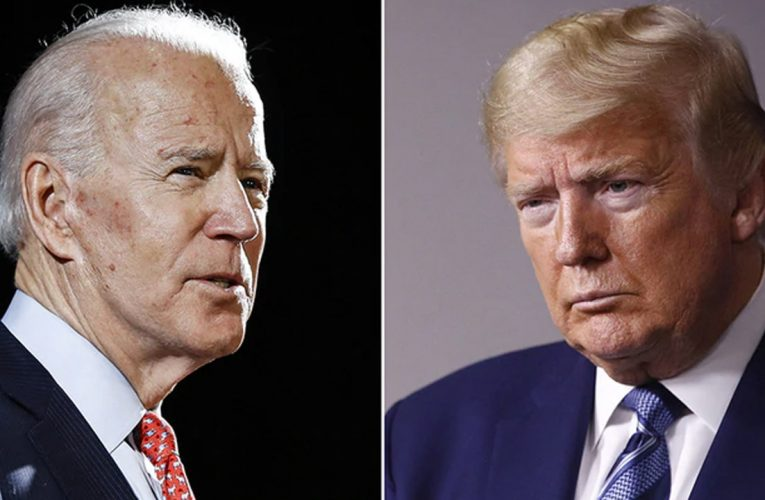 Twitter employees heavily favored Biden over Trump ahead of 'priceless' ban