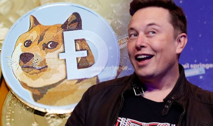 Dogecoin price: Elon Musk's DOGE tweets worry crypto analysts 'Going to lose money'