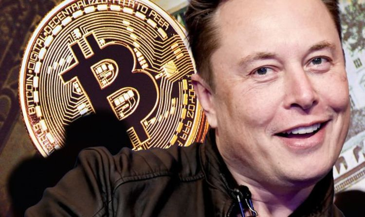 Bitcoin $57,000! Elon Musk and investors stage 'speculative attack' on fiat, expert claims