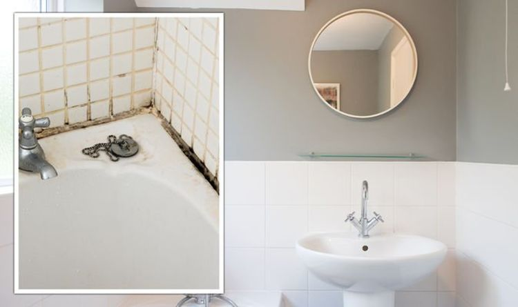 How to avoid damp: Expert advice on how to stop damp building up in your bathroom