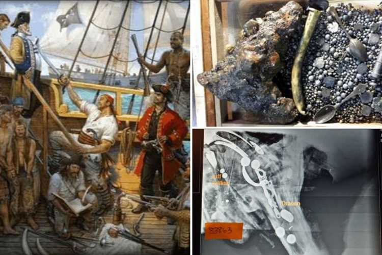 Pirate skeletons from 300-year-old shipwreck found off Cape Cod in hunt for 'wealthiest pirate ever' Black Sam Bellamy