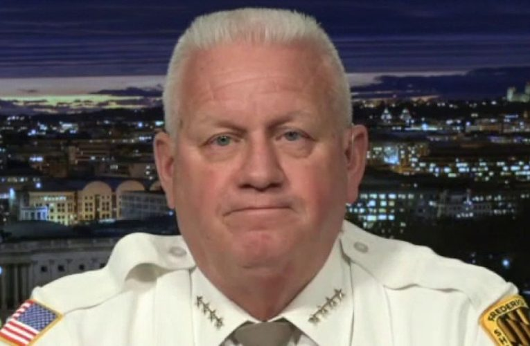 Americans should be 'outraged' over Biden's immigration actions, 'dismantling' ICE: Maryland sheriff