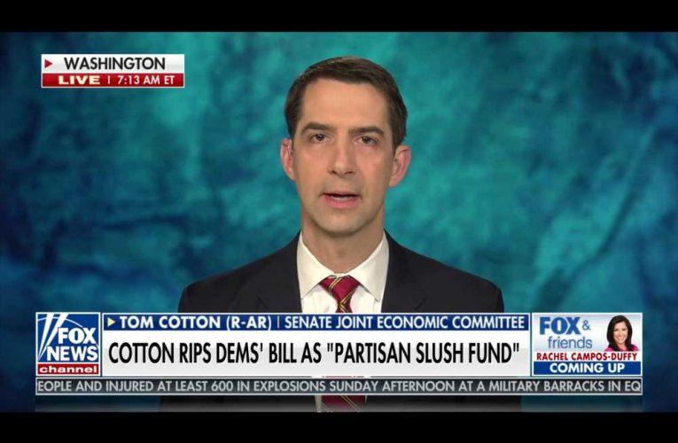 Under Trump Sen. Cotton Voted Twice for Relief Checks for Prisoners. Now Blasts Practice as 'Crazy Democrat Idea'