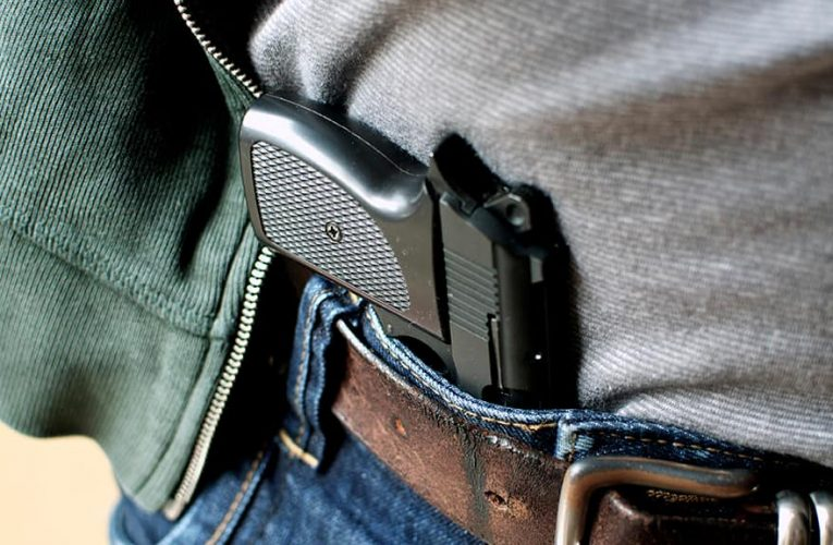 Michigan county's backlog on concealed-pistol licenses prompts lawsuit: report