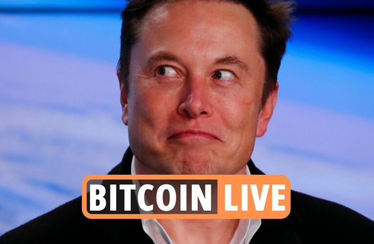 Bitcoin latest – Elon Musk's shock Tesla announcement sees price PLUMMET, plus Shiba Inu & Dogecoin cryptocurrency