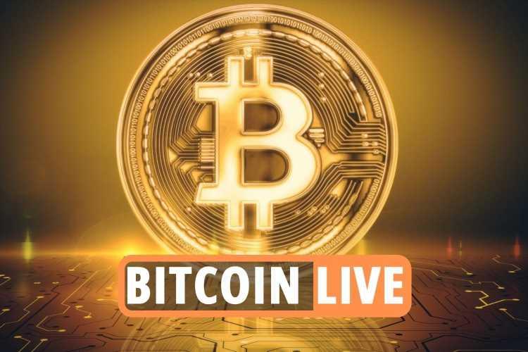 Bitcoin price updates – Cardano and Ethereum reach record high as Dogecoin drops despite Elon Musk on SNL