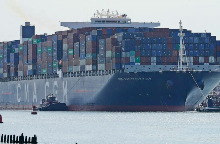 Largest container ship hits East Coast as ports see surge
