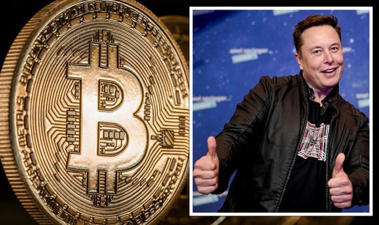 Bitcoin warning as Musk sends 'Wild West' crypto surging – call for new US regulator