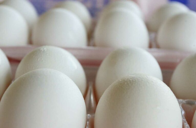 Can eggs be a part of a healthy diet? Experts say yes, and also bust myths about eating raw yolks