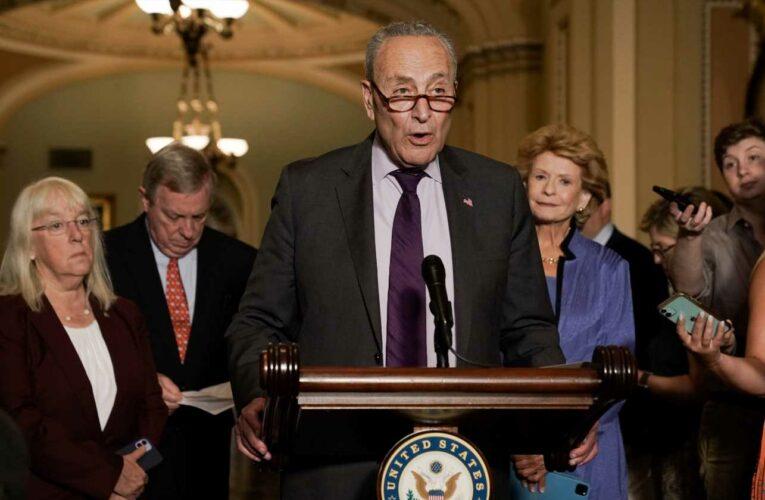 OnPolitics: Democrats struggle to pass voting rights bill