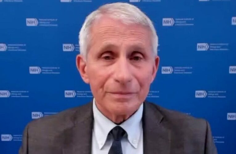 Cawthorn stands by call for criminal charges against Fauci: He 'broke his oath'