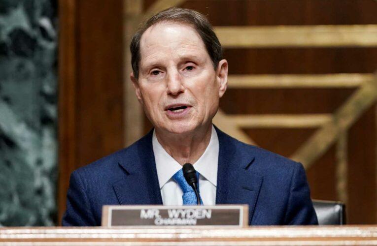 Oregon Democrat proposes Senate bill to overhaul tax break for pass-through businesses