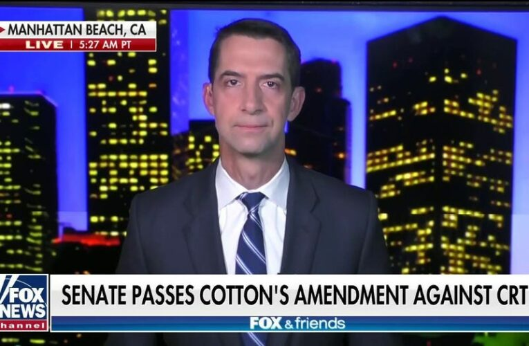 Tom Cotton: Dems will have to answer at ballot box for support of 'un-American' CRT curriculum