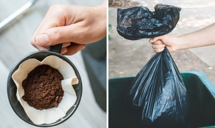 How to stop your bin smelling – the £1.39 cleaning hack to banish bad odours